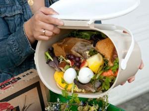 Wasting-Food