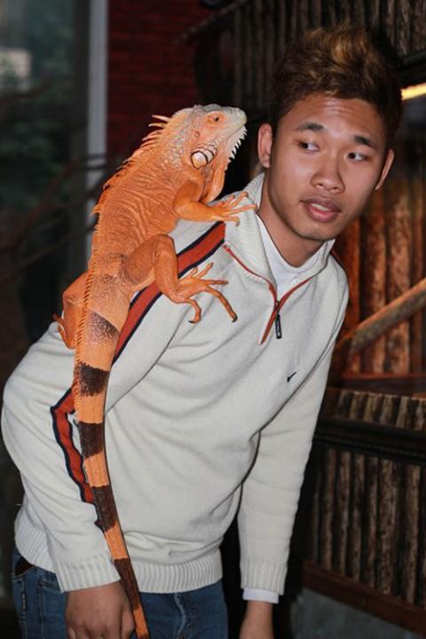 Pet Cafe, Вьетнам, Ханой, Нгуен Мин Ния